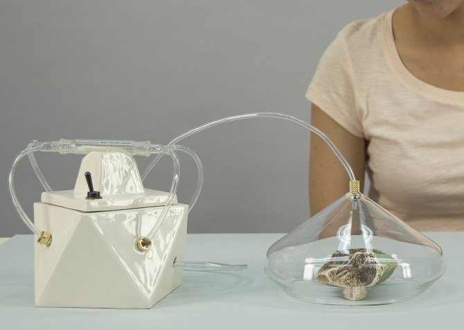 Amy Radcliffe's odour capture system - Image: Artists own